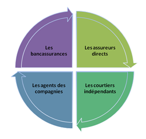 assureurs directs, courtiers indépendants, agents de compagnies, bancassurances